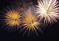 Feuerwerk BAM